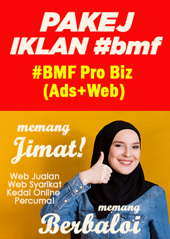 pop-up-baner-promo-bmf-pro-biz